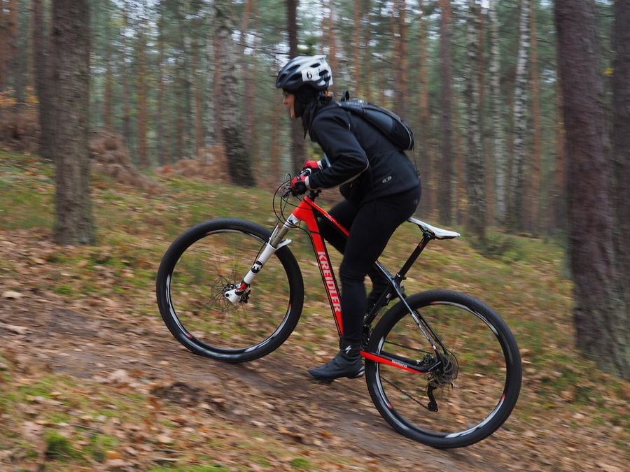 Kreidler Stud Team Test Opis Team29er 18