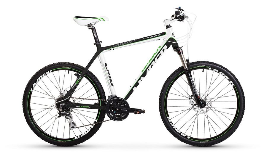 bike tasso29 big